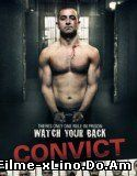 Convict (2014) Online Subtitrat
